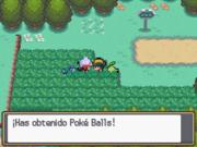 Recibiendo Poké Balls de Lira en Pokémon Oro HeartGold y Plata SoulSilver.