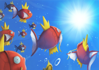 Evento Magikarp Pokémon Center Hiroshima.png