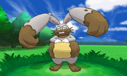 Diggersby Pokemon XY.png