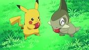 EP662 Axew y Pikachu.jpg
