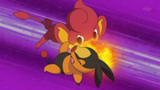 EP665 Pansear VS Tepig.png