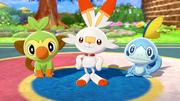 Pokémon iniciales de Galar EpEc.png