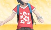 Camiseta de Flores.png