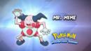 EP878 Cuál es este Pokémon.png