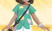 Camiseta de Flores Verde.png
