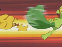 Treecko usando portazo contra Pikachu