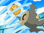 EP518 Psyduck y Duskull.png