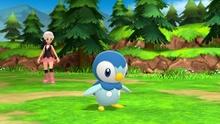Vista jugador combate Pokémon DBPR.jpg