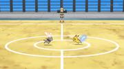 EP943 Bunnelby VS Pikachu.png