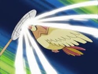 Pidgeotto usando golpe aéreo.