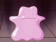 EP037 Ditto (3).png