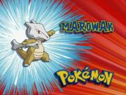 EP109 Pokémon.png