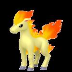 Ponyta macho