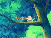 EP474 Mankey y Geodude peleando en el árbol.png