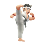 VS Karateka LGPE.png