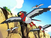 EP482 Swellow.png