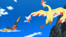 EP889 Moltres sin cola.png