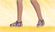 Zapatos Planos Calculador.png