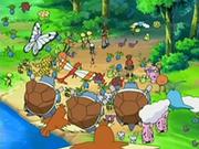 EP541 Pokémon del bosque.png