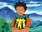 EP189 Brock con Sunkern.png