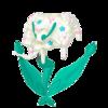 Florges blanca