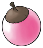 Ilustración de Bonguri rosa