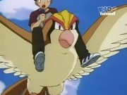 EP105 Pidgeot volando.jpg