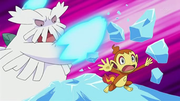 EP596 Chimchar VS Abomasnow.png