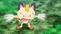 Meowth del Equipo/Team Rocket usando golpes furia.