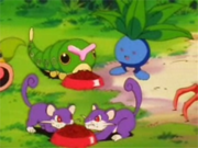 EP010 Caterpie, Oddish y Rattata.png