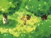 EP010 Protagonistas en el bosque.jpg