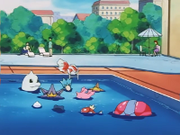 EP212 Piscina.png