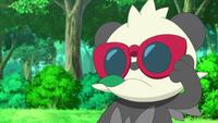 Pancham con sus gafas rojas.