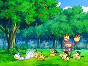 EP553 Pokémon jugando.png