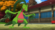 EP879 Grovyle de Scottie.png