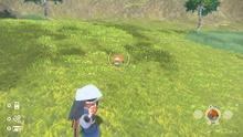 Captura de Pokémon LPA.jpg